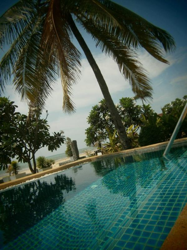 Beautiful sparking pool- the only thing between you and the sand!