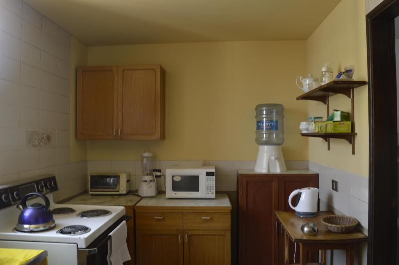 The electric stove on the left and other appliances in the background.