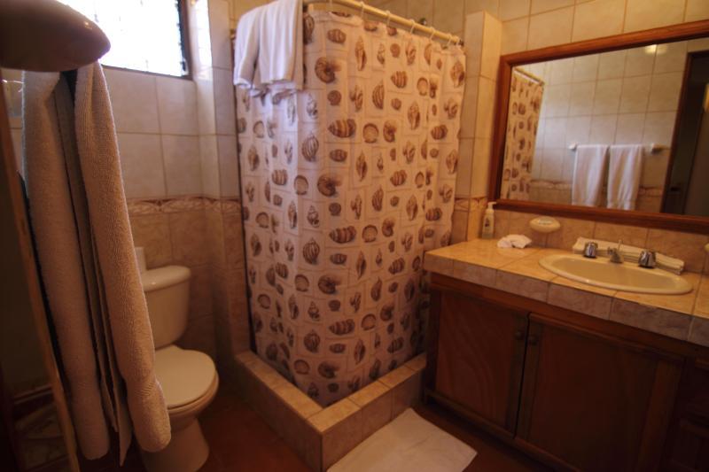 Central bathroom