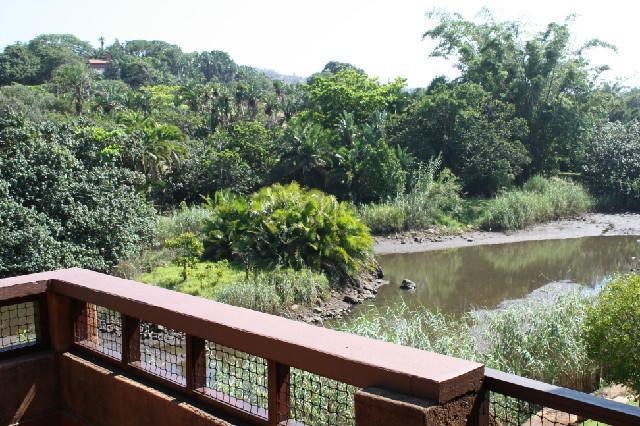 View from verandah onto the lagoon