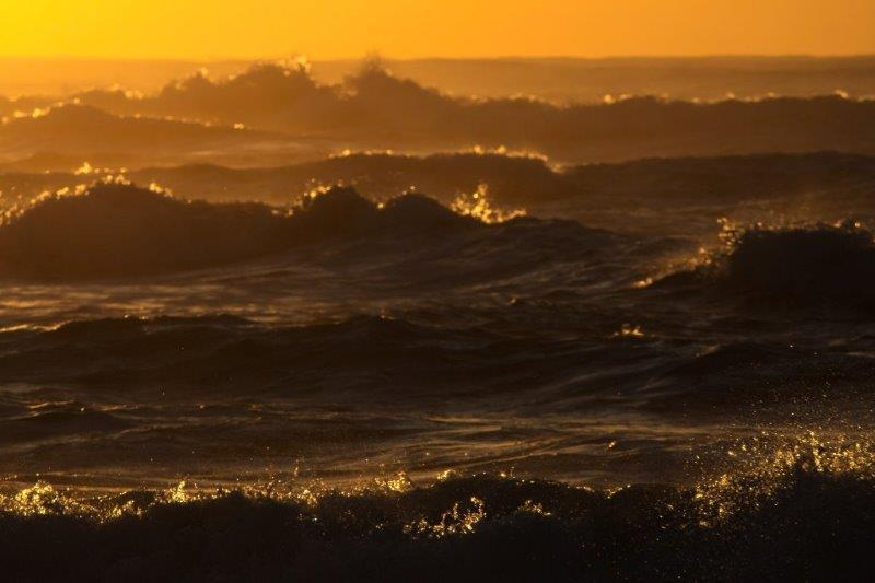 Rolling waves at dawn