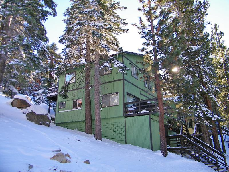 Tahoe Treehouse!