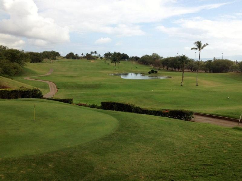 Golfer's Paradise! Elleair is 10 mins away and surprisingly affordable! ($15 weekday evening)