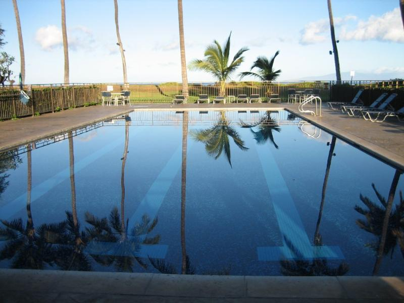 Solar heated lap pool with lounge chairs and tables