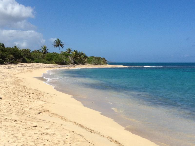 one of the many beaches on the island
