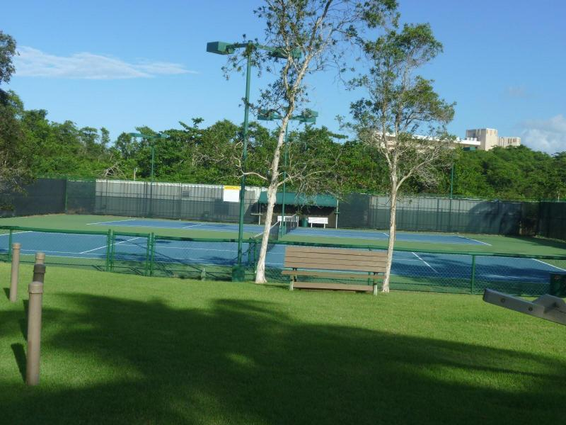 Two tennis courts, with lights