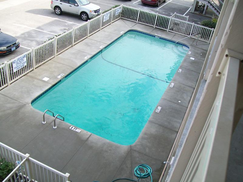 pool just after concrete was poured