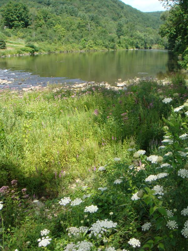 Housatonic rivier