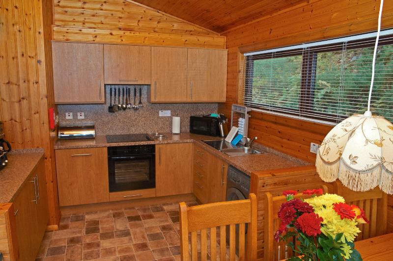 Premier Lodge No 3 - Kitchen