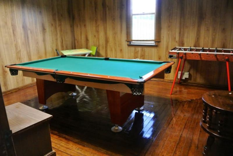 Salle de jeux/pool Table/Electronic Darts