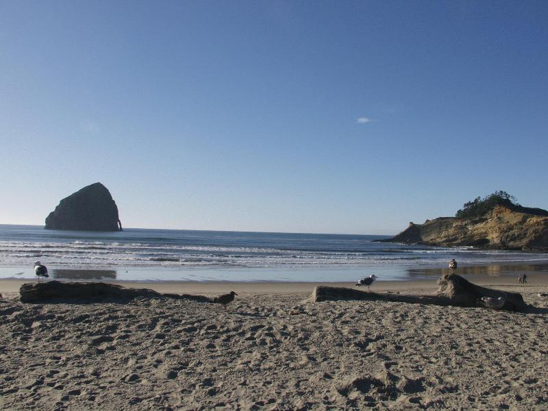 Pacific City Beach House -- Surfsidelanding, vacation rental in Pacific City