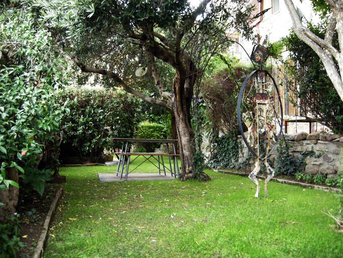 Spazio giardino con ulivo.