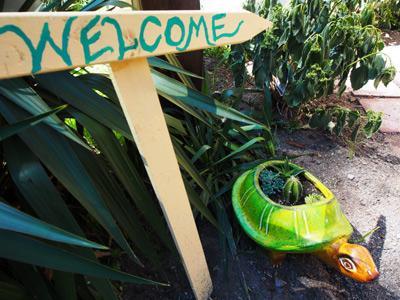 Le Tortuga affamé, la famille et le chien Friendy ! Monte Rio, CA