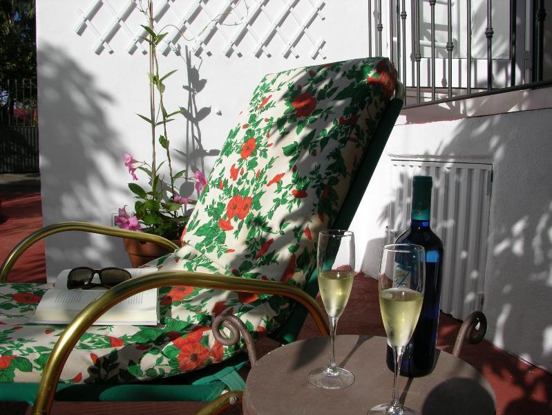 Beba um copo de vinho enquanto você lê um livro à sombra de um abacateiro.