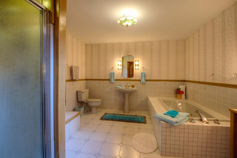 The Master ensuite bath is spacious and has a jacuzzi tub and separate shower
