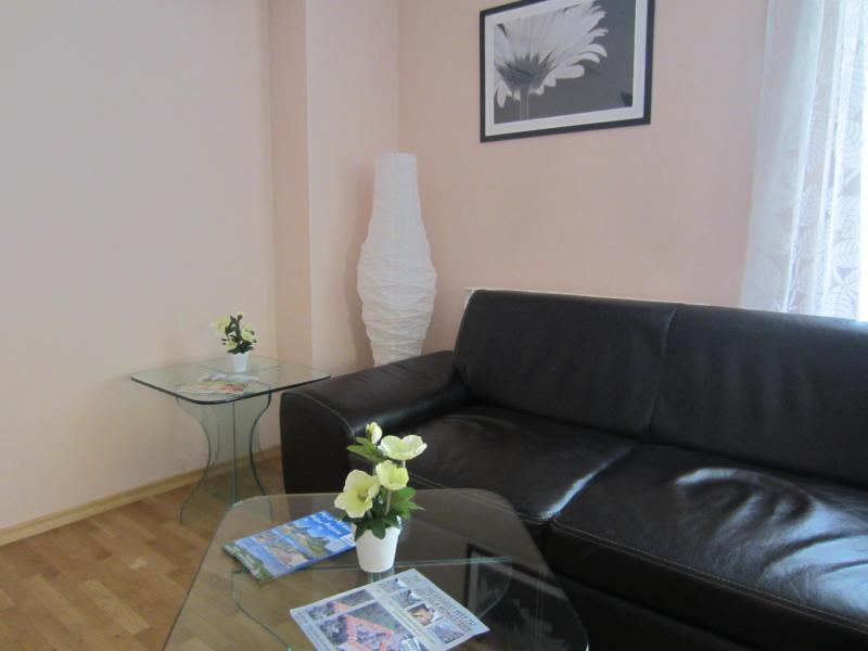 Vip Apartments Sofia - Denkoglu Apartment, holiday rental in Sofia