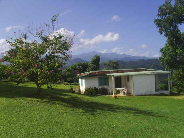 Shotover Gardens Estate - cottage with pool, holiday rental in Port Antonio