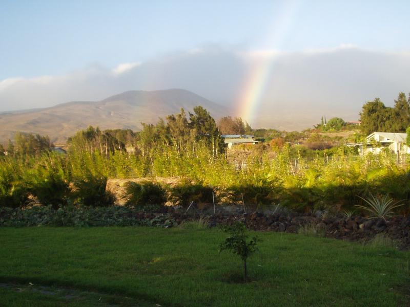 Kohala Mountain Rainbow