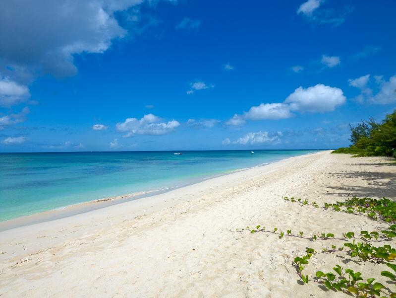 Spiaggia vista nord