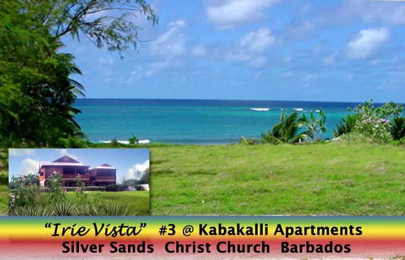 Barbados Oceanview Apartment 'Irie Vista', holiday rental in Silver Sands