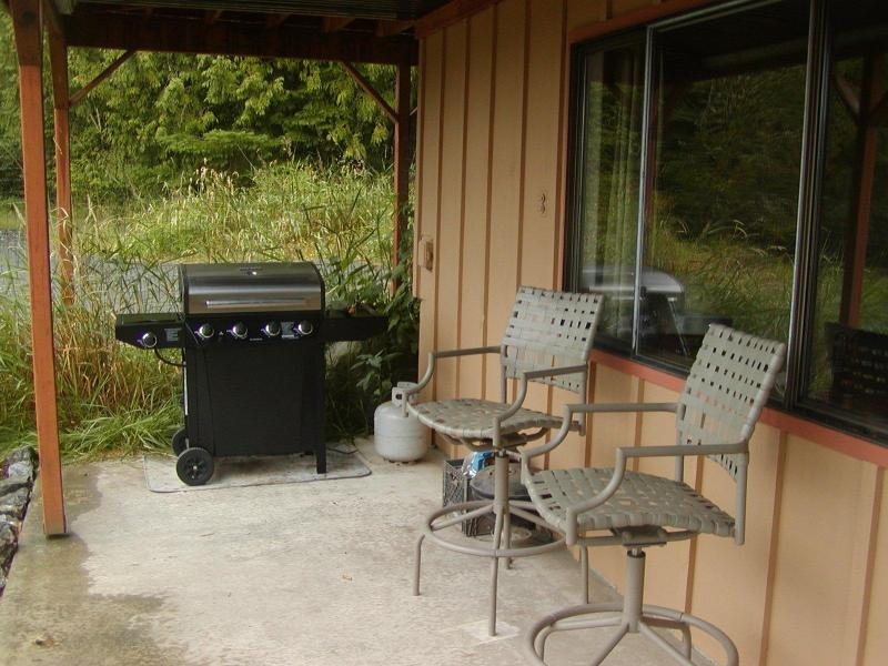 Outdoor Gas Barbecue with covered patio