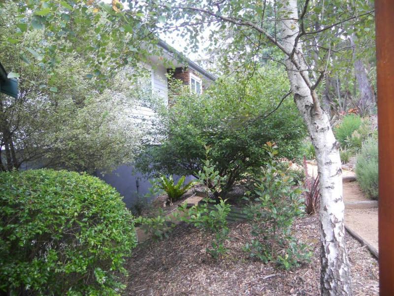 Carrington Treetops front garden
