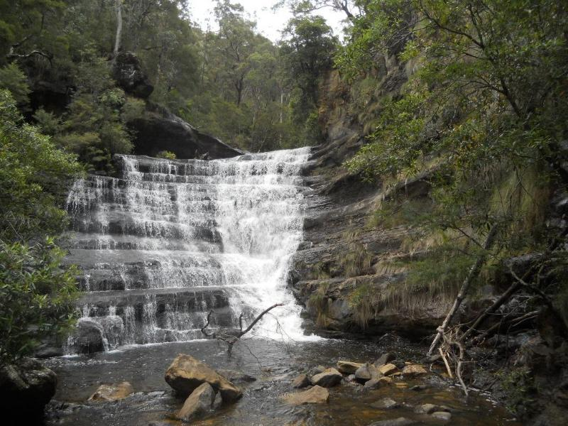 Victoria Falls - nearby bushwalk