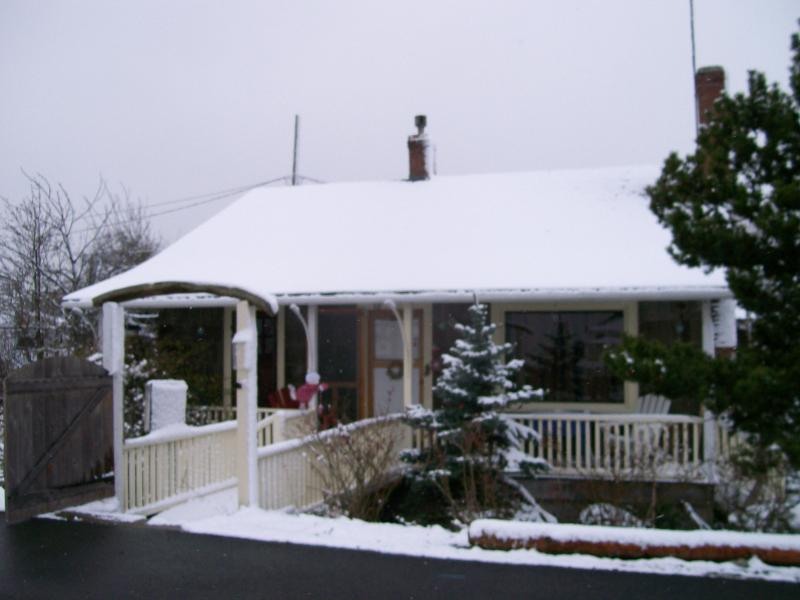 Your Own Coastal Life Christmas Cottage Covered in snowflakes.  Anyway you like to decorate inside.