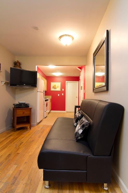 Living Room with sleep sofa