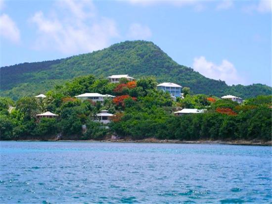 Ballyhoo - Carriacou