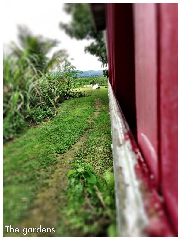 path to the vegetable gardens