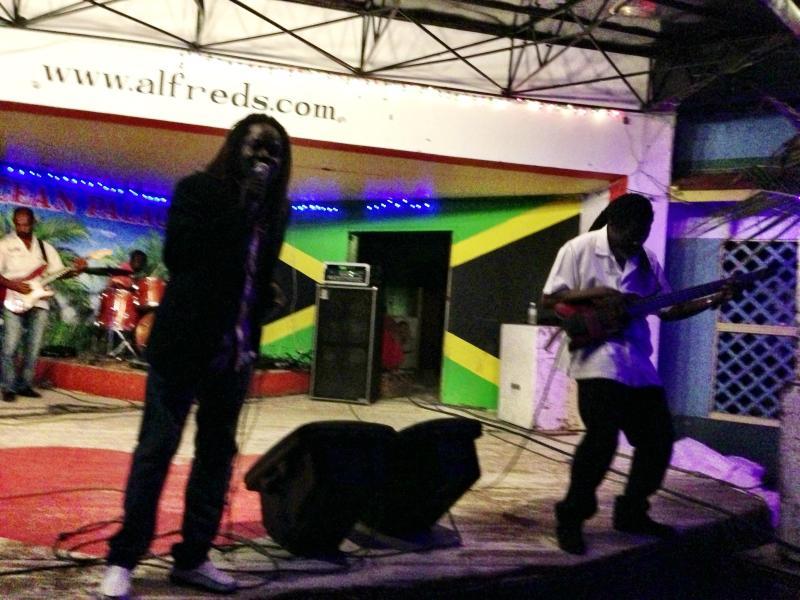 reggae shows!