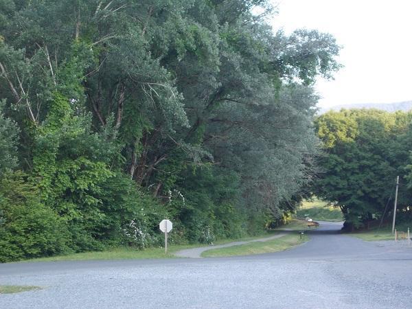 Alvarado Vacation Rental Home Near Creeper Trail Smart TV, location de vacances à Abingdon