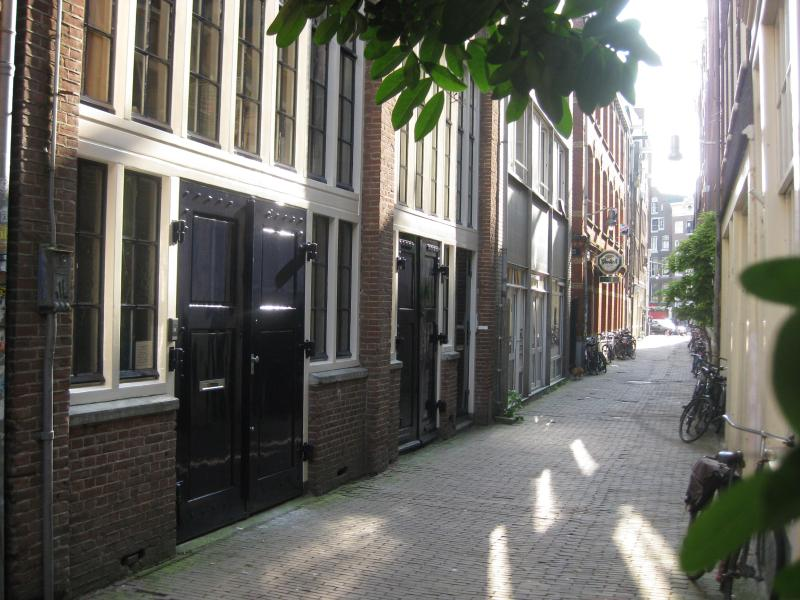 The Metropolitan private apartment with garden, vakantiewoning in Amsterdam
