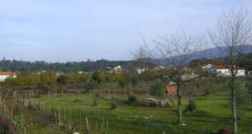 View to Alagoa