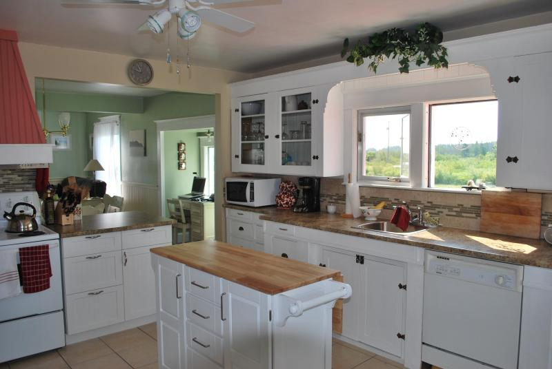 kitchen with century old cupboards