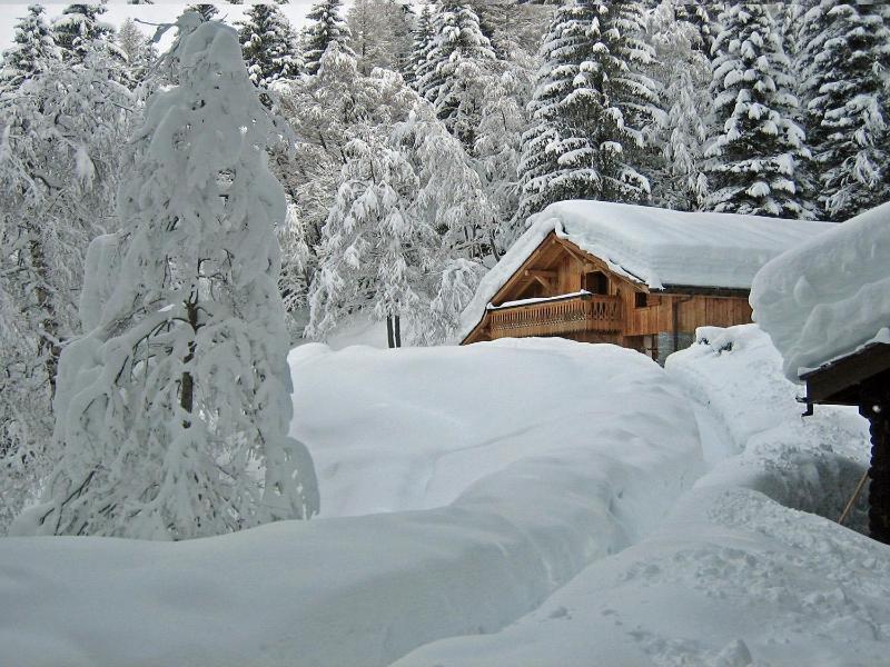 Marmotte Mountain Retreat - private winter wonderland location