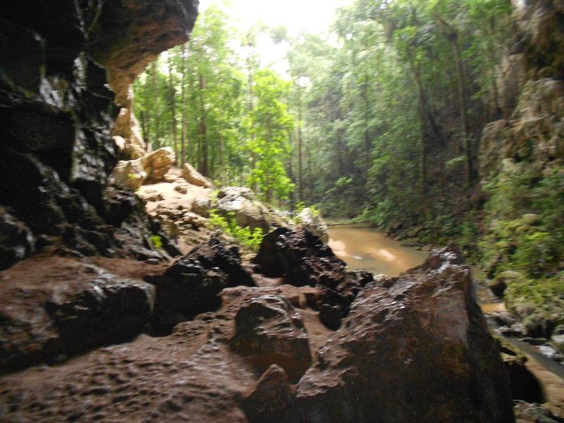 Rio Frio Cave in the Mountain Pine Ridge
