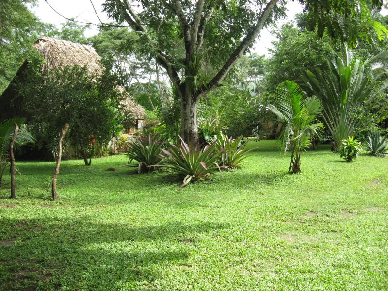 Property park like setting