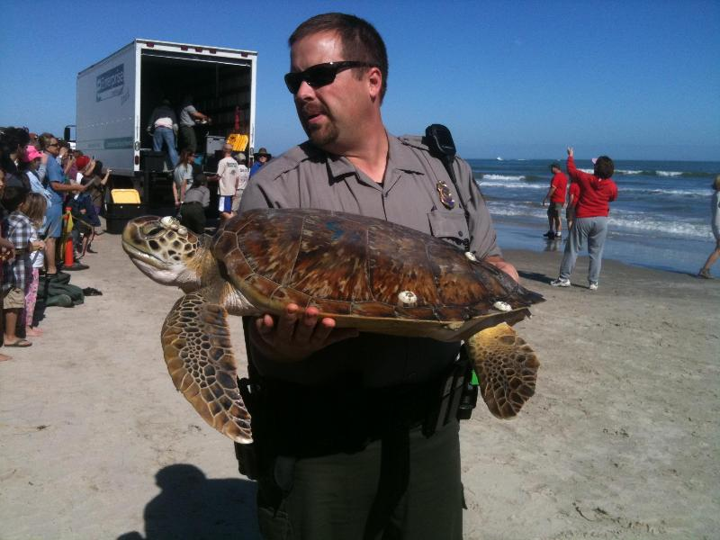 Turtle A:Min.to Beach,Schlitterbahn,Fishing,Wifi,Gym,Heat Pool,Gym,Sauna,Jacuzzi, vacation rental in Corpus Christi