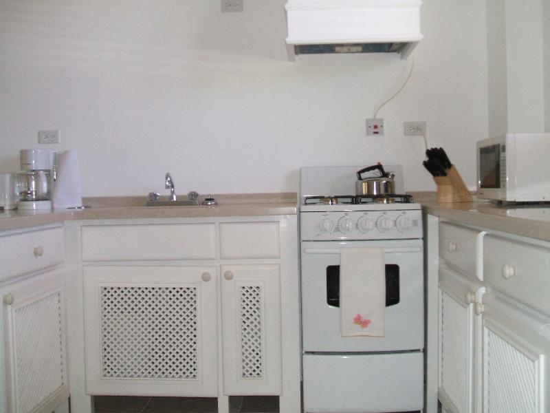 Kitchen view 2:  stove, oven, exhaust hood, sink, etc.
