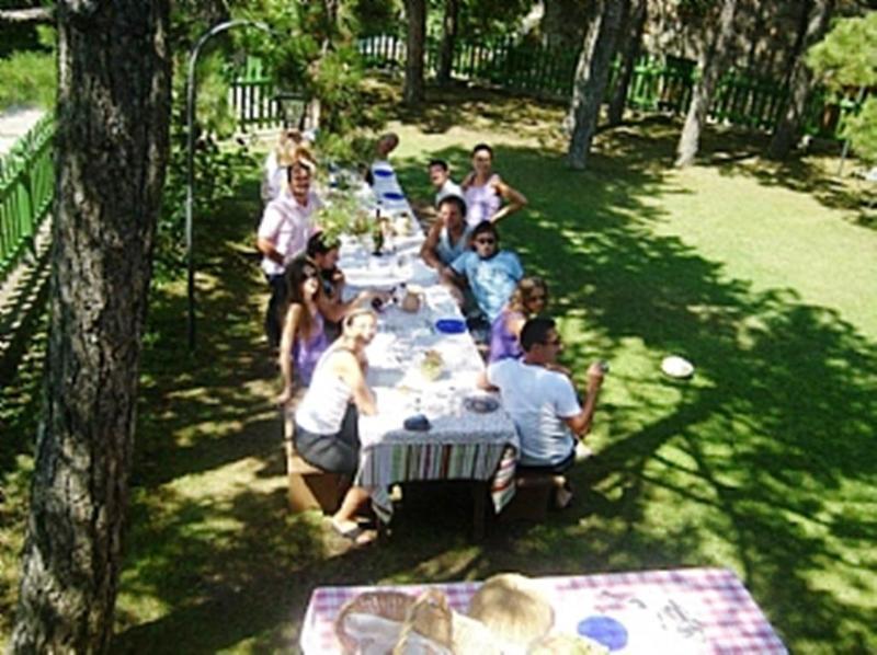 Almoço no jardim da frente