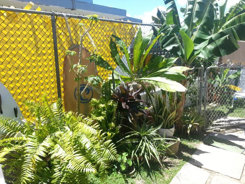 Back garden to the Left