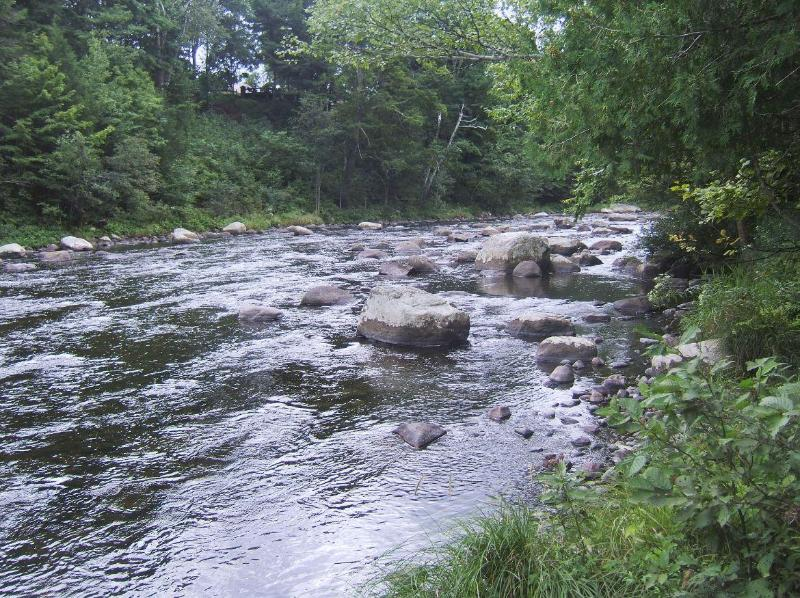 West Branch of the Ausable