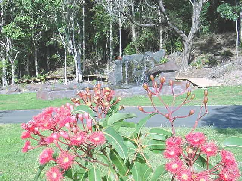 Área de jardim