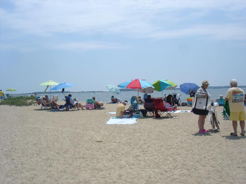 Our local beach is 1000 feet long, view to the left. Colonial Acres Beach