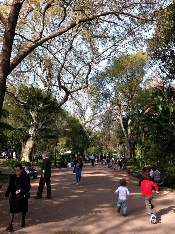 Jardim da Estrela, next to the Basilica.  Walk, tram or taxi to this old park with tropical species