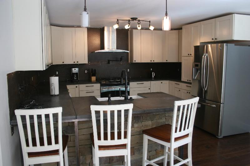 Custom Kitchen - Concrete counter tops