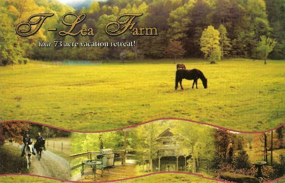 T Lea Farm