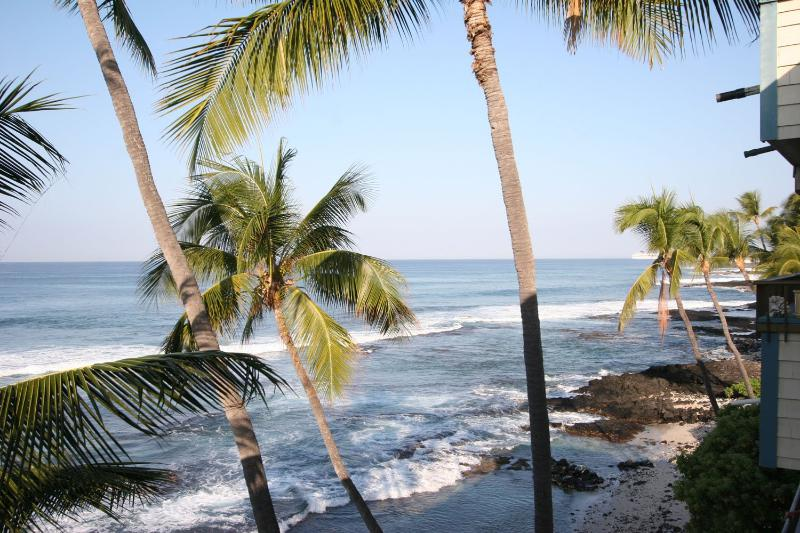 Ocean and Palm Trees